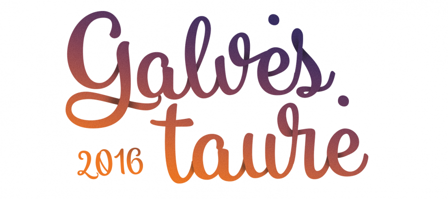 Iki jubiliejinės penktos GALVĖS TAURĖ 2016 liko jau mažiau nei 3 savaitės!  /  Less than 3 weeks left till 5th jubilee GALVĖS TAURĖ 2016 regatta!